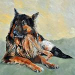 A german shepherd commission